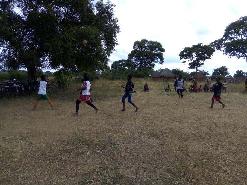 Festival netball